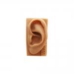 Modelo de orelha de silicone p/ estudo
