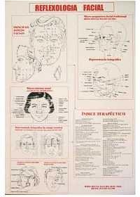 Mapa Reflexologia Facialog:image