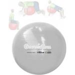 Gynastic Ball (65cm)  Cinza