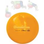 Gynastic Ball (75cm)  Laranja