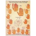 Mapa Pontos p/ Acupuntura e moxa nas mãos